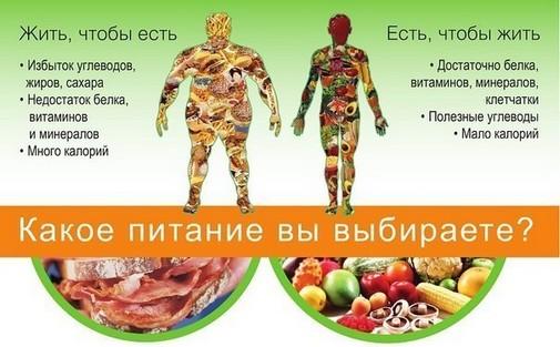 сжигание жира на животе женщин питание