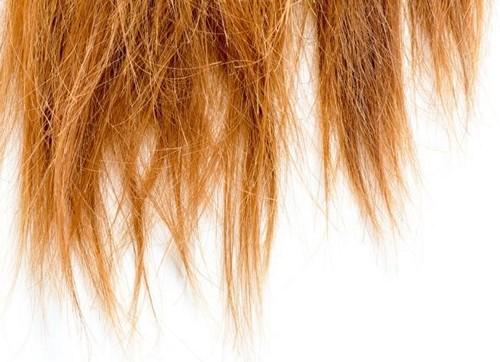 Полировка волос, эффективный способ борьбы с посеченными кончиками, плюсы и минусы процедуры