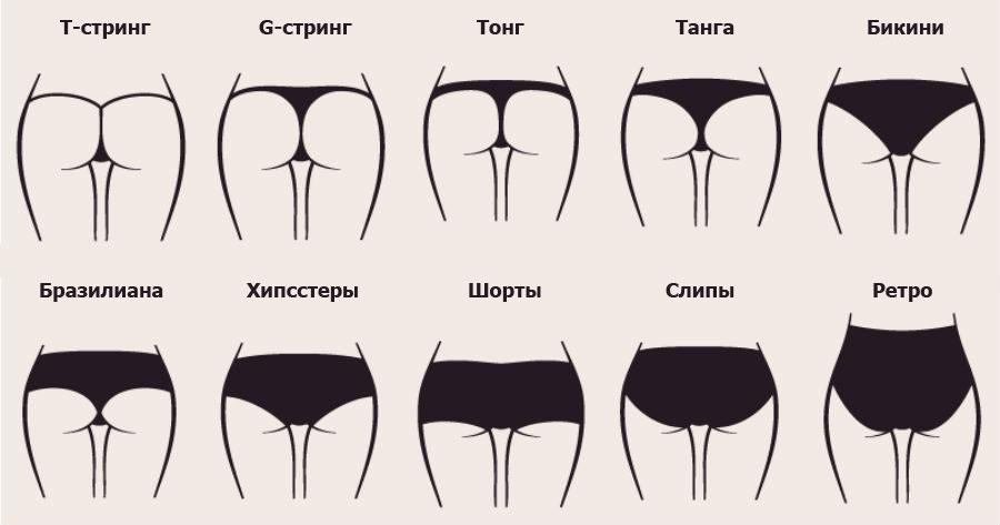 9657745d1d185 20 видов женских трусов: стринги, шортики, слипы, бразилиана и др.