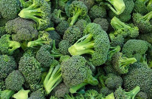 Как и с чем готовить брокколи