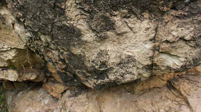 Мумие полезные свойства и противопоказания